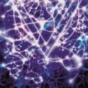 Album Review: The Mindsweep // Enter Shikari