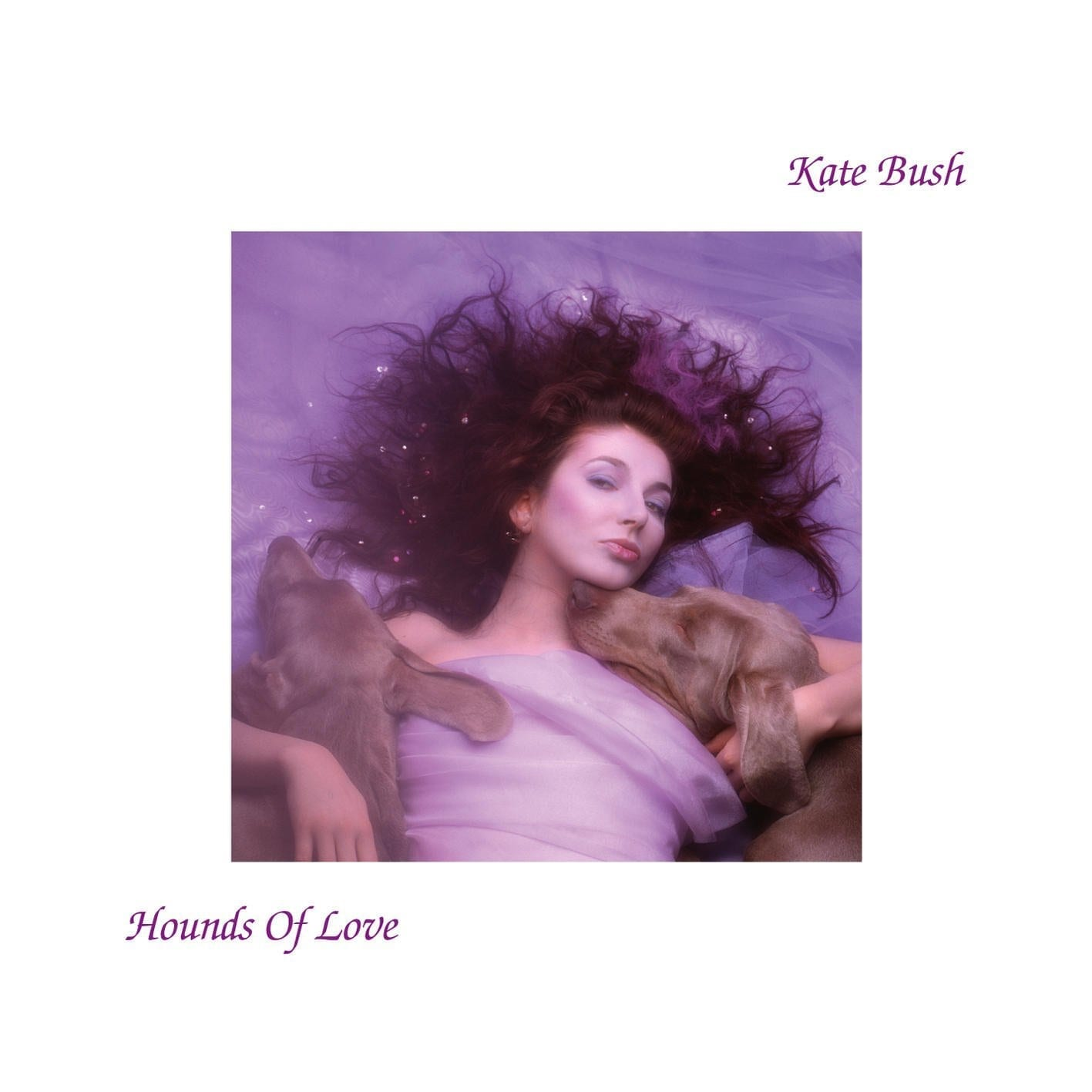 A Blast From The Past: Hounds Of Love // Kate Bush