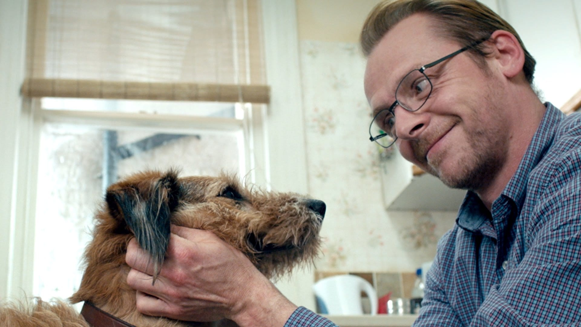 Film Review: Absolutely Anything