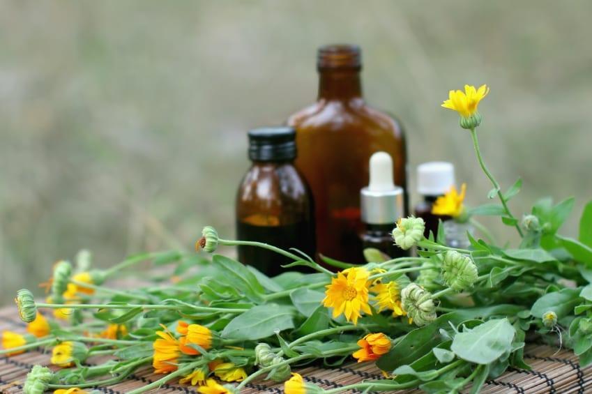 Am I weird? Analysing my herbal lifestyle