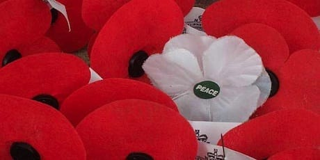 The White Poppy: Remember in Peace