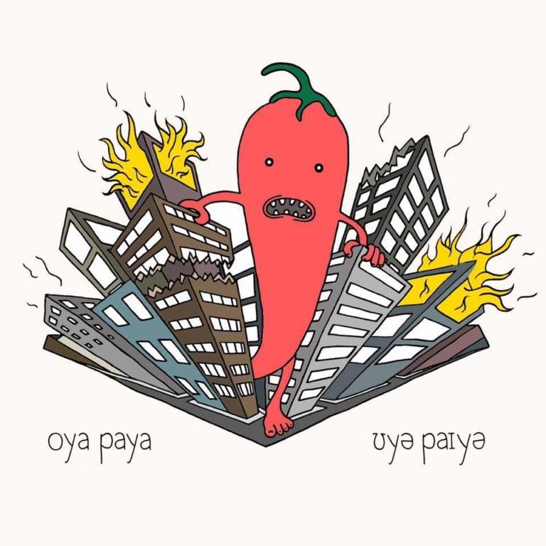 Track Review: Put My Record On // Oya Paya