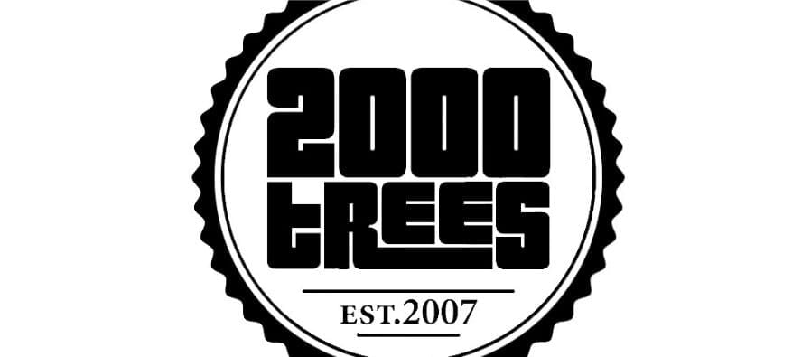 2000 Trees Announces More Bands