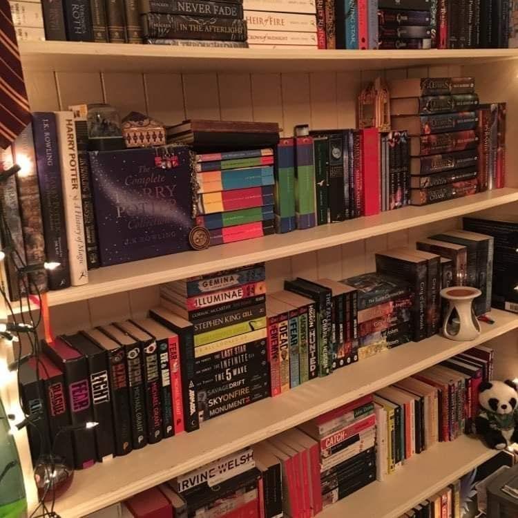 My Journey Through a Literary Labyrinth