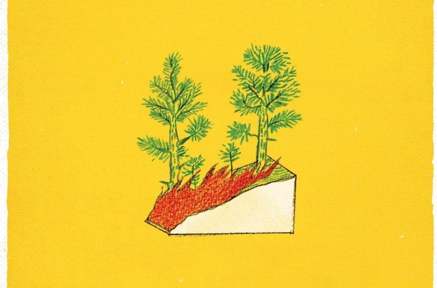 Album Review: Take The Edge Off // Pet Crow