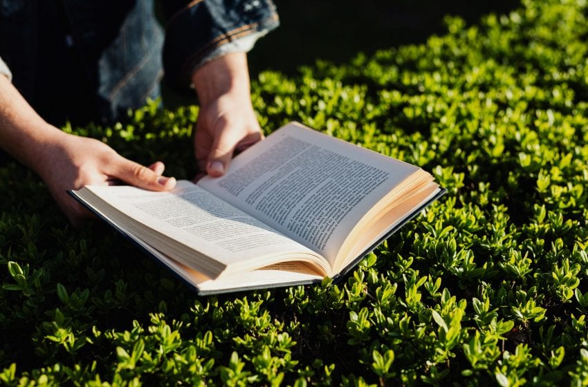 Top 5 Books to Read this Summer