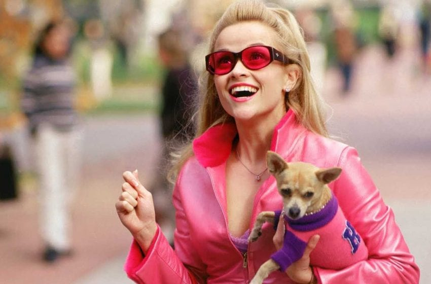Legally Blonde, Legally Brilliant: Revisiting an early-Noughties Icon