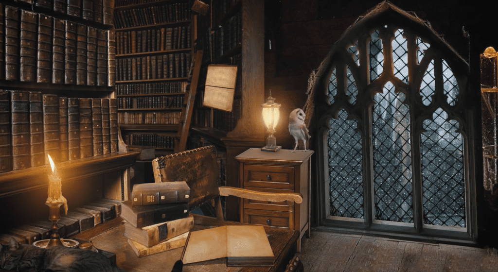 harry potter cosy ambient relaxing asmr video