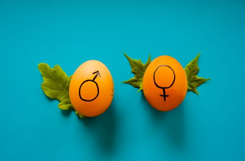 Ignorance Towards Vaginismus Exposes A Gender Bias In Medical Research