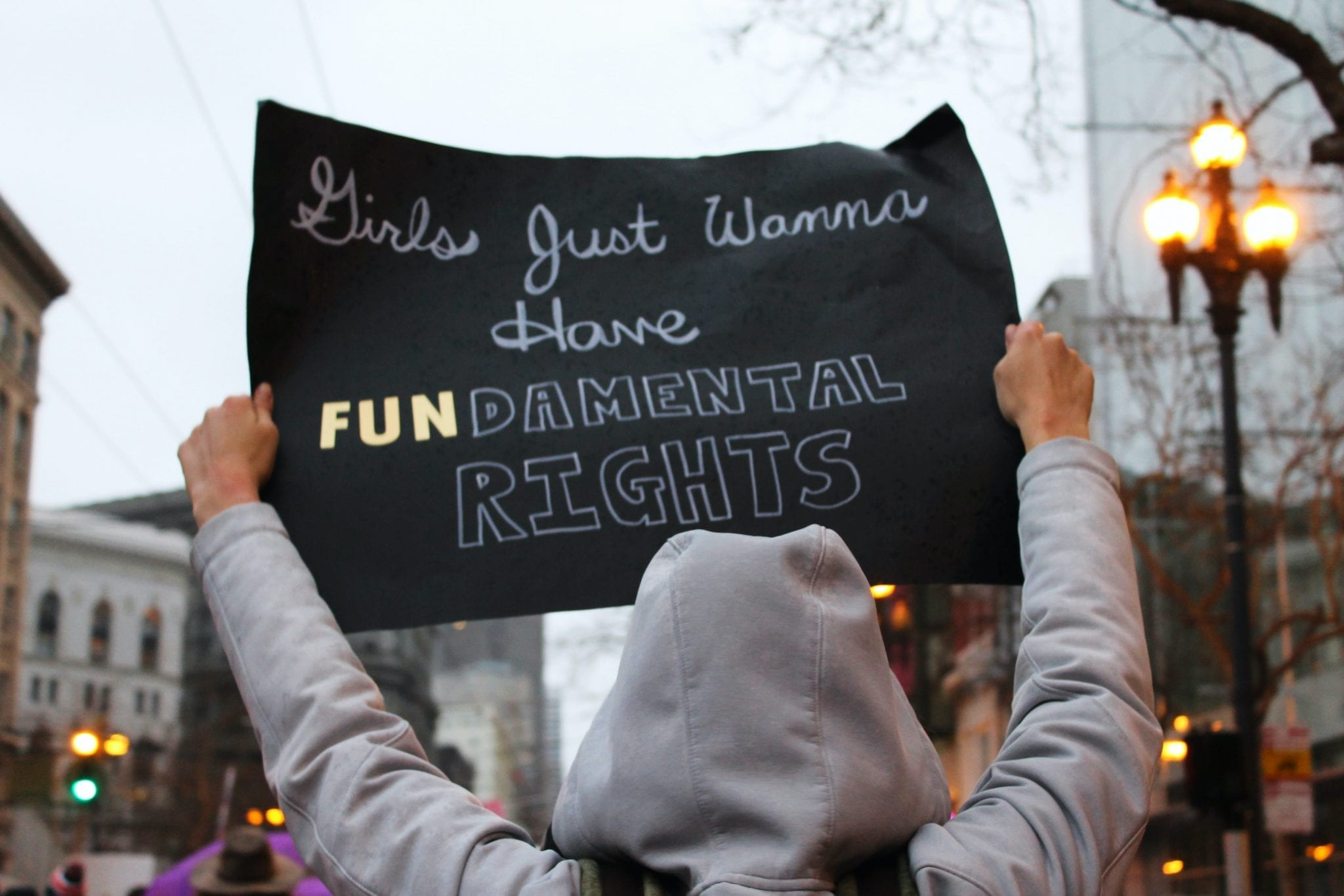 'girls just wanna have fundamental human rights' protest sign