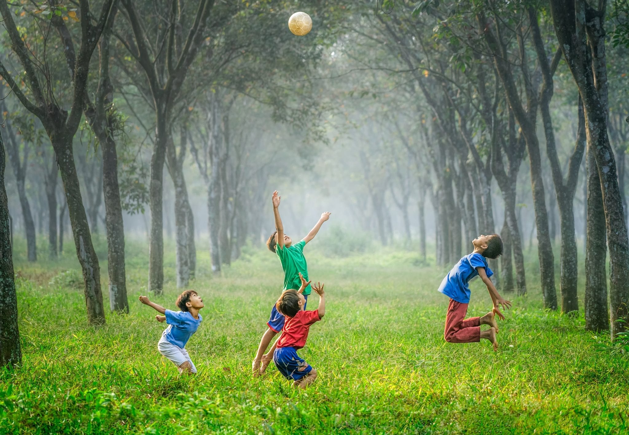 four children jumping in grass in a forest