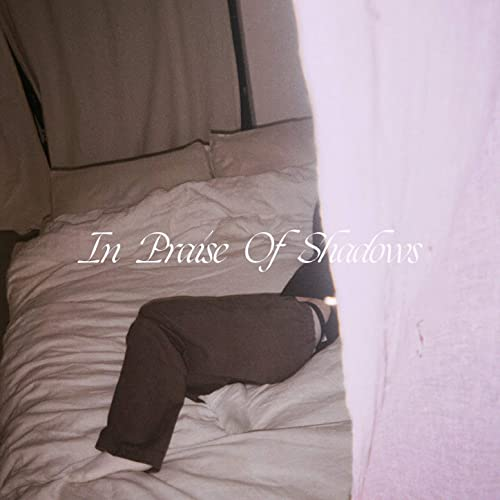 Album Review: In Praise Of Shadows // Puma Blue
