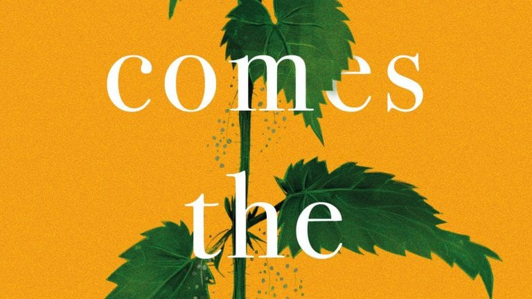 Book Review: Here Comes the Miracle // Anna Beecher
