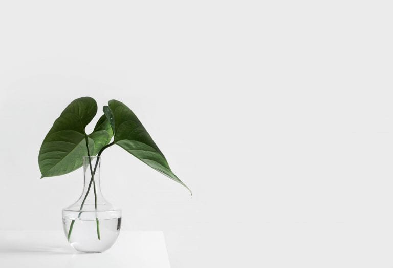 Minimalism: The Key To Fulfilment Or Just Another Fad?