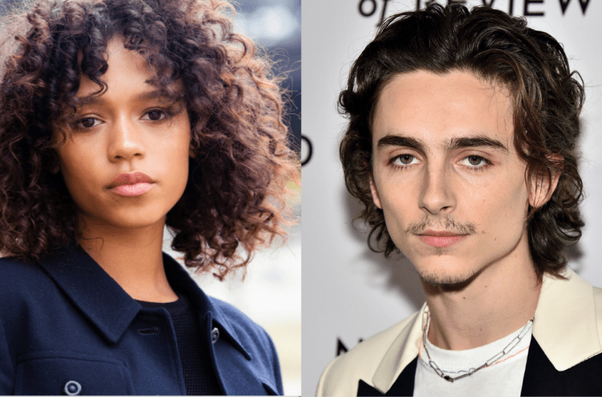 Timothée Chalamet and Taylor Russell In Talks To Star In  'Bones & All'
