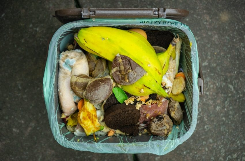 Four Easy Things You Can Do To Fight Food Waste