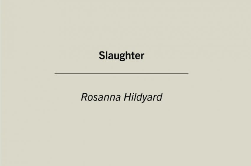 Book Review: Slaughter // Rosanna Hildyard