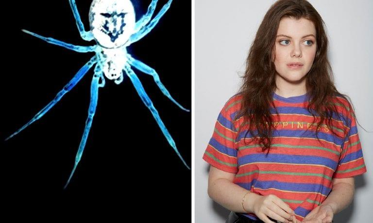 Southwark Playhouse To Premiere Philip Ridley's 'Tarantula'