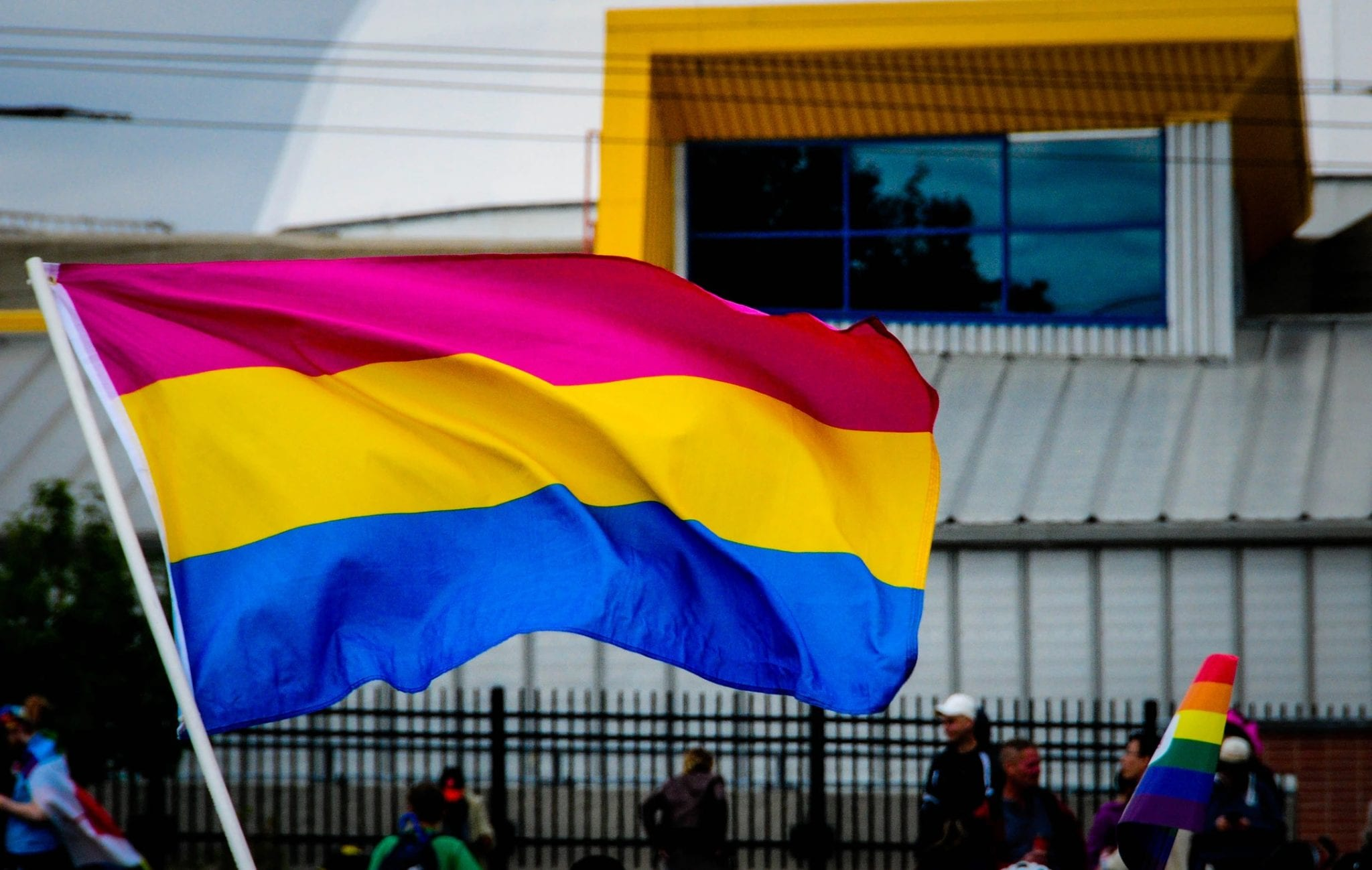 pansexuality flag